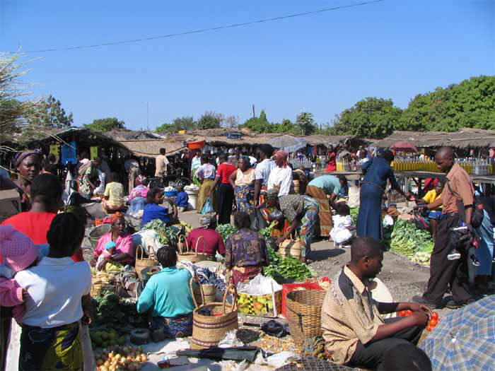 Everything we have different degrees of online african food market